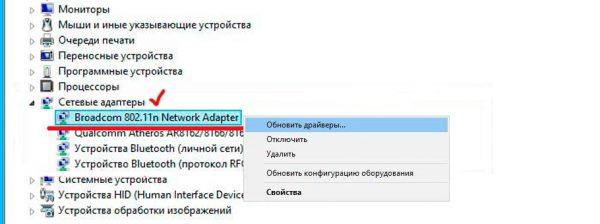 Окно настройки «Сетевые адаптеры» в «Диспетчера устройств» Windows