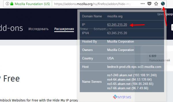Окно с информацией об IP адресе сайта
