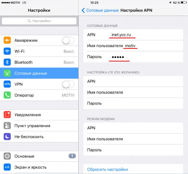 Экран настройки мобильного интернета на iPad