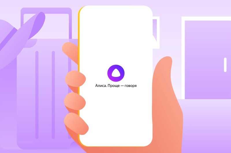 Новые возможности Алисы от«Яндекса»: распознавание предметов, QR-кода и текста на фотографии