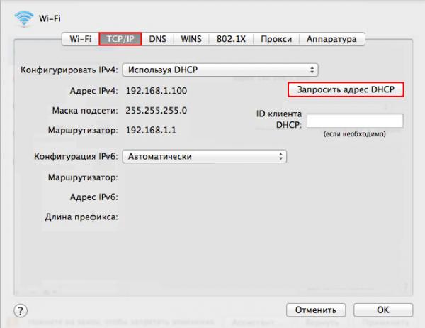 Получение IP через DHCP